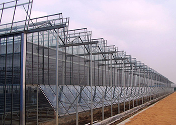 Cabriolet Greenhouse